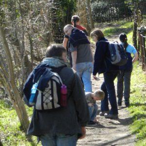 Wendover Walk